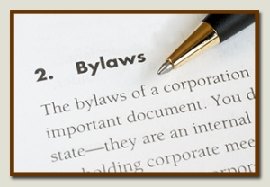 business_entity_bylaws